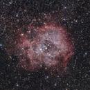 rosette nebula,                                Andreas Max Böckle
