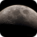 Mond / Moon,                                Dave