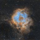 Rosette Nebula,                                tomb18