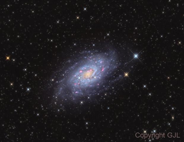 NGC 2403  in  Cam,                                GJL