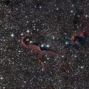 IC1396,                                ursus