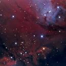 Fox Fur Nebula Detail,                                Andrew Barton