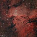 The Fighting Dragons of Ara (NGC 6188),                                Sebastian Marchi