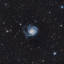 M101, Pinwheel Galaxy,                                AcmeAstro