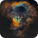 NGC7822 in Cepheus,                                Sendhil Chinnasamy