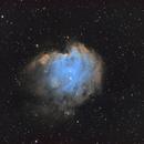 The Monkey Head Nebula in the Hubble palette,                                Abduallah Asiri