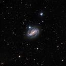 NGC 613,                                Warren A. Keller