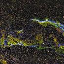 Veil Nebula,                                Shailesh Trivedi