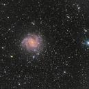 NGC6946 aka Feuerwerksgalaxie,                                Jörg Schneider