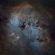 IC 410 Tadpoles - Widefield SHO/RGB Stars,                                Dhaval Brahmbhatt
