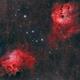 IC410+ IC405 in Aur,                                Federico Bossi