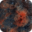 The Soap Bubble,                                Seymore Stars