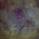 IC1396 region in SHO palette,                                Stefano Zamblera