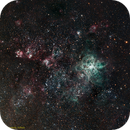 NGC2070 The Tarantula Nebula,                                Ian Hynes