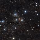 NGC2170,                                Dan Watt