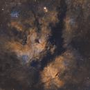 Sadr Region (IC 1318 or the Gamma Cygni Nebula),                                Sasho Panov