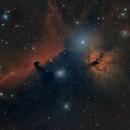 IC434 and NGC2024 Horsehead and Flame Nebulae,                                brad_burgess