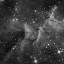 Heart Nebula (Melotte 15),                                Stuart Goodwin