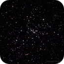 Messier 48 - Open Cluster in Hydra,                                Gustavo Sánchez
