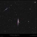 Caldwell 32 - Whale Galaxy,                                Frank Schmitz