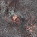 Cygnus wide field,                                David Parker