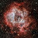 Rosette Nebula,                                Gerard O'Born