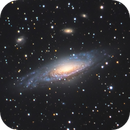 NGC 7331   The Deer Lick Group,                                Roland Schliessus