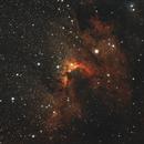 C9 Cave Nebula,                                Robert Browning