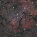 Wide field IC1396,                                Eric MAZALEYRAT