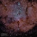 IC 1396 Elephant's Trunk Nebula,                                Robert Van Vugt