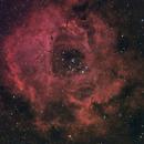 Rosette Nebula,                                Barry Wilson