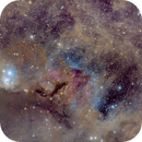 IC 348,                                Paul Fays-Long
