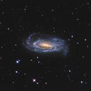 NGC5033,                                Rich Sornborger