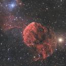 IC 443. Jellyfish between two Giants,                                Simas Šatkauskas