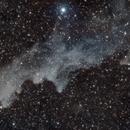 IC2118 (Witch Head Nebula),                                Astrodobermann