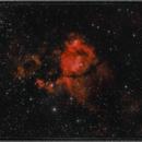 IC 1795: The Fishhead Nebula,                                floreone