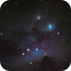 Running Man  NGC 1975,                                Cheman