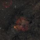 IC1396 and Sh2-129 - Elephant trunk and Flying bat nebula,                                Miroslav Horvat