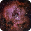 Rosette Nebula NGC2237,                                dkuchta5