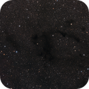 Barnard 169, 170, 171 & 174,                                Gary Imm