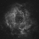 Rosette Nebula,                                Amart020