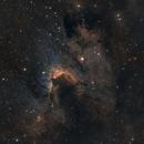 Cave Nebula in SHO SH2-155,                                Bogdan Borz