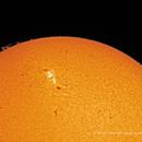 Sun / 2017.09.01 / 01:23:04 PM EDT,                                Ron Bokleman