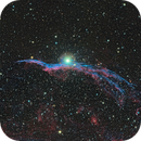 NGC 6960 - Witches Broom,                                Michael Blaylock