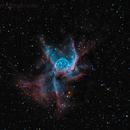 NGC 2361,                                Mike Miller