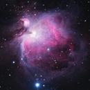M42 - Orion Nebula,                                Ray Ellersick