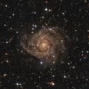 The Hidden Galaxy (IC 342),                                Marcel Nowaczyk