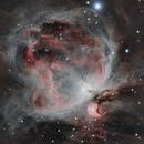 Orion Nebula, M42,                                Michelle Bennett