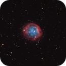 Abell 31 / Sh2-290 / PK 219+31.1 (Asteroid 189 Phthia),                                Chris Sullivan
