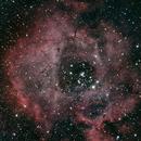 NGC 2237 Rosette Nebula (RGB),                                interplanetary